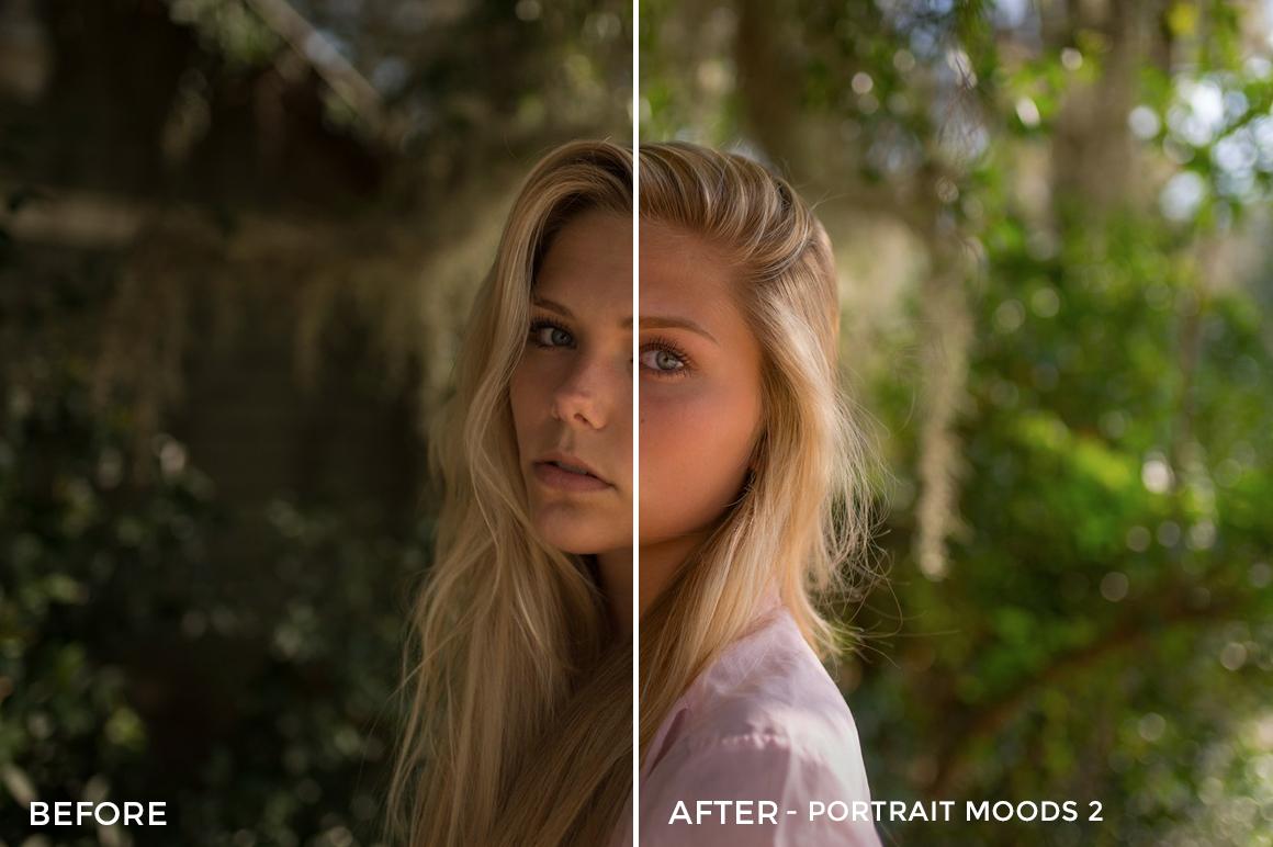 8 Portrait Moods 2 - TJ Drysdale Lightroom Presets - TJ Drysdale Nature & Portrait Photography - FilterGrade Digital Marketplace
