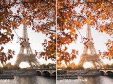 7 Autumn- Olivier Wong Lightroom Presets - @wongguy974 - FilterGrade Digital Marketplace