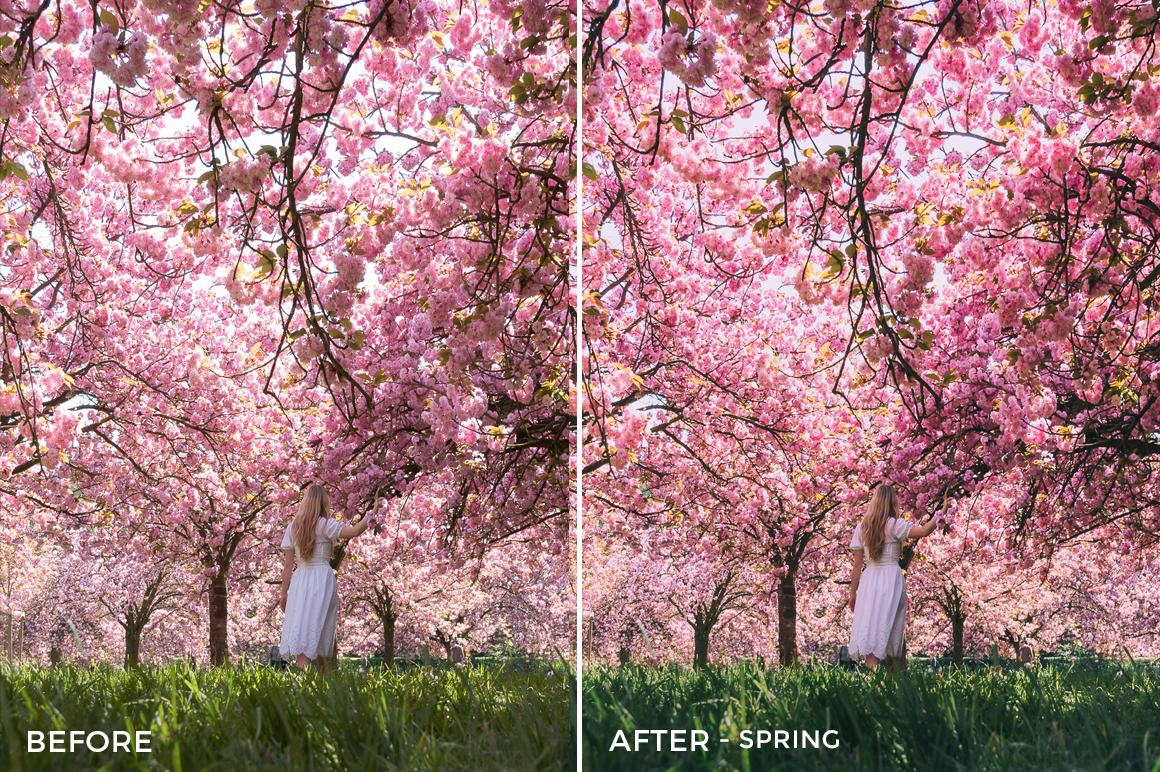 6 Spring- Olivier Wong Lightroom Presets - @wongguy974 - FilterGrade Digital Marketplace