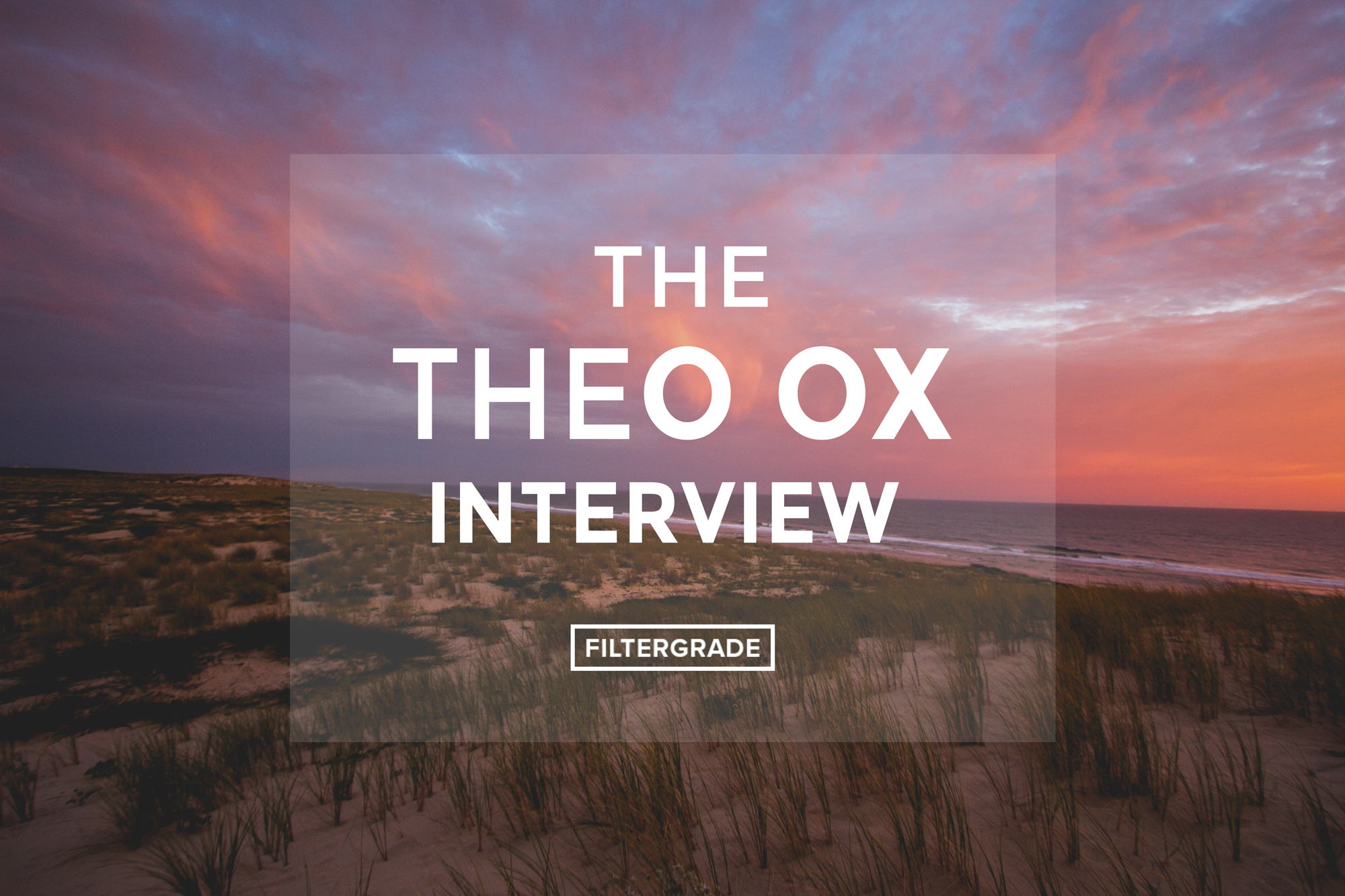 1-FEATURED-The-Theo-Ox-Interview---FilterGrade-Blog