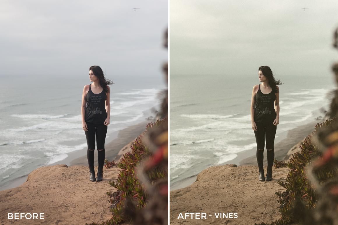 13 Vines - Speedy Donahue Zephyr Pack Lightroom Presets- Sean Donahue Photography - FilterGrade Digital Marketplace