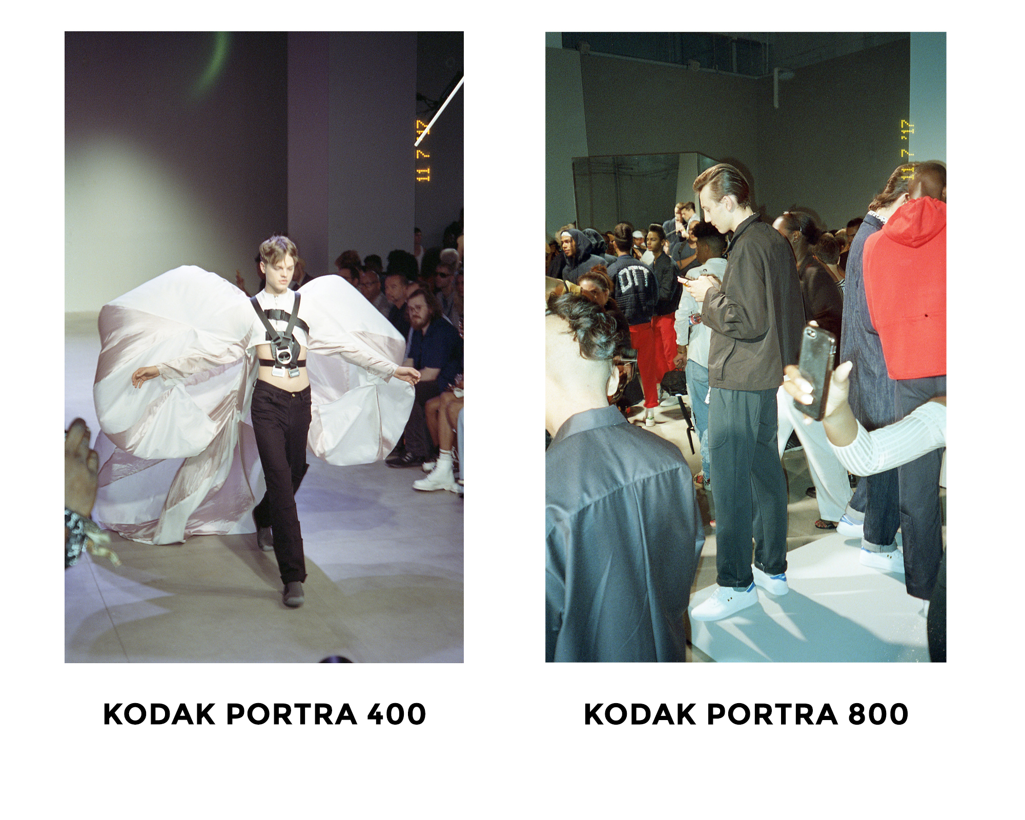 3 - Kodak Portra 400 vs. Kodak PortrA 800 - FILTERGRADE BLOG