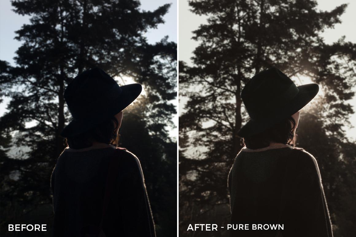 9 Pure Brown- Colorgrader Lightroom Presets - @colorgrader - FilterGrade Digital Marketplace