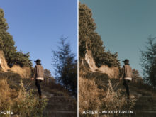 8 Moody green- Colorgrader Lightroom Presets - @colorgrader - FilterGrade Digital Marketplace