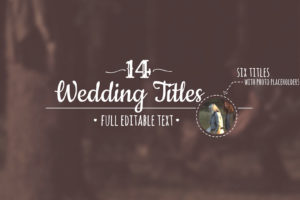 Animated Wedding Titles After Effects Template