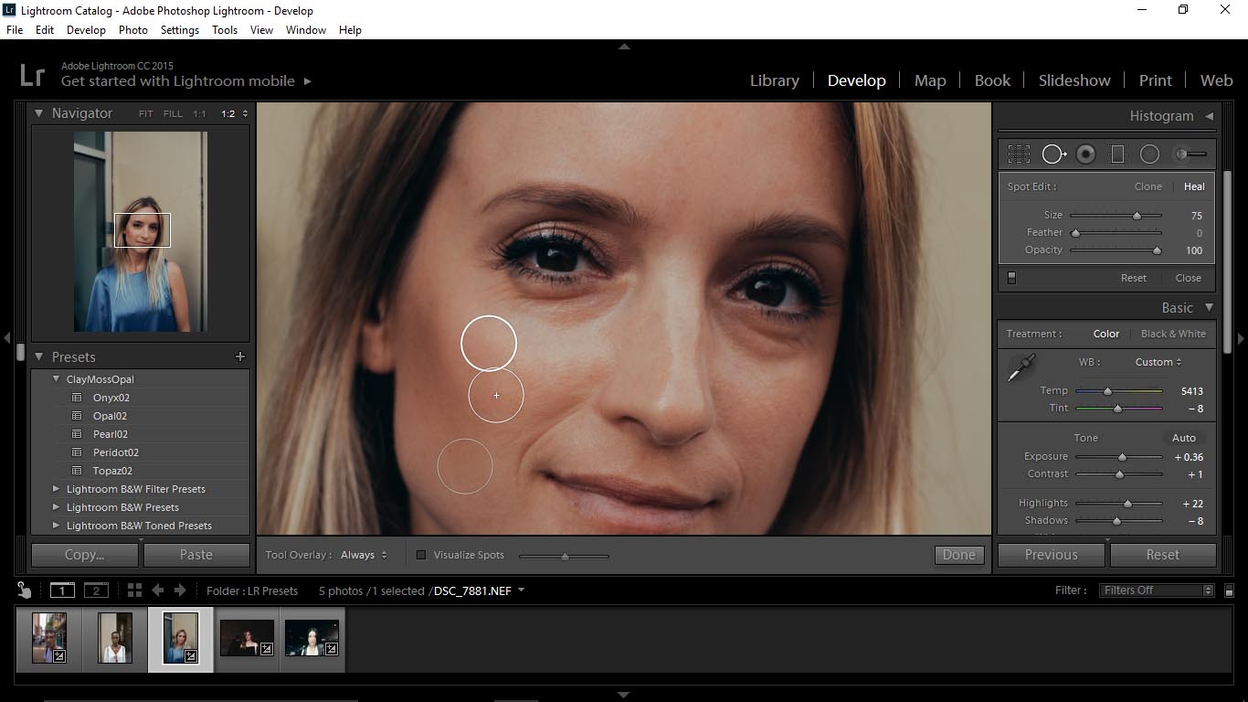 11 Editing Portraits Using Unique Lightroom Presets - FilterGrade Blog