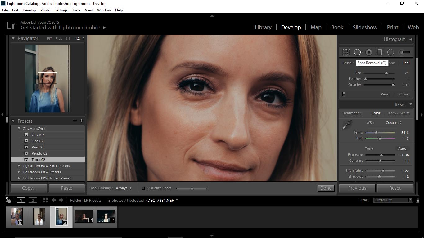 9Editing Portraits Using Unique Lightroom Presets - FilterGrade Blog