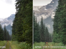 7 am In Canadian Forest - Niklas Nxploring Lightroom Presets - FilterGrade