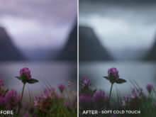 Soft Cold Touch - Dmitry Shukin Lightroom Presets - FilterGrade