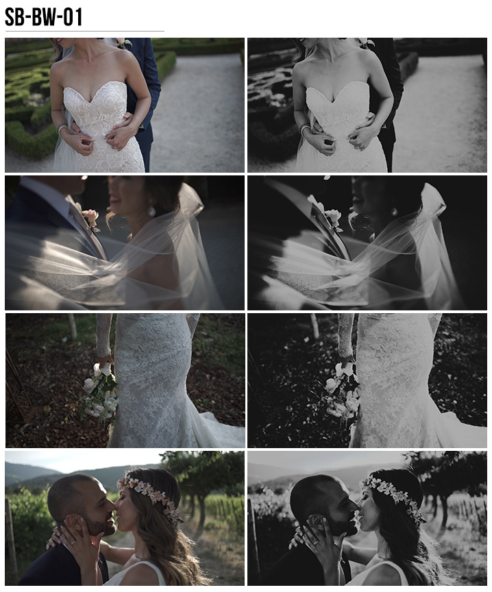 10 Vanessa & Ivo's Wedding LUTs - SB Pack - FilterGrade