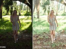 2 Forest - Sweet Teal Blog Lightroom Presets - FilterGrade