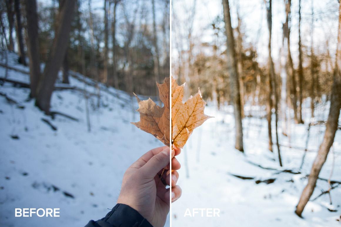 warm winter lightroom preset