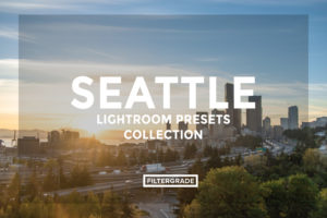 16 David Duan Castillo Seattle Lightroom Presets Collection - FilterGrade