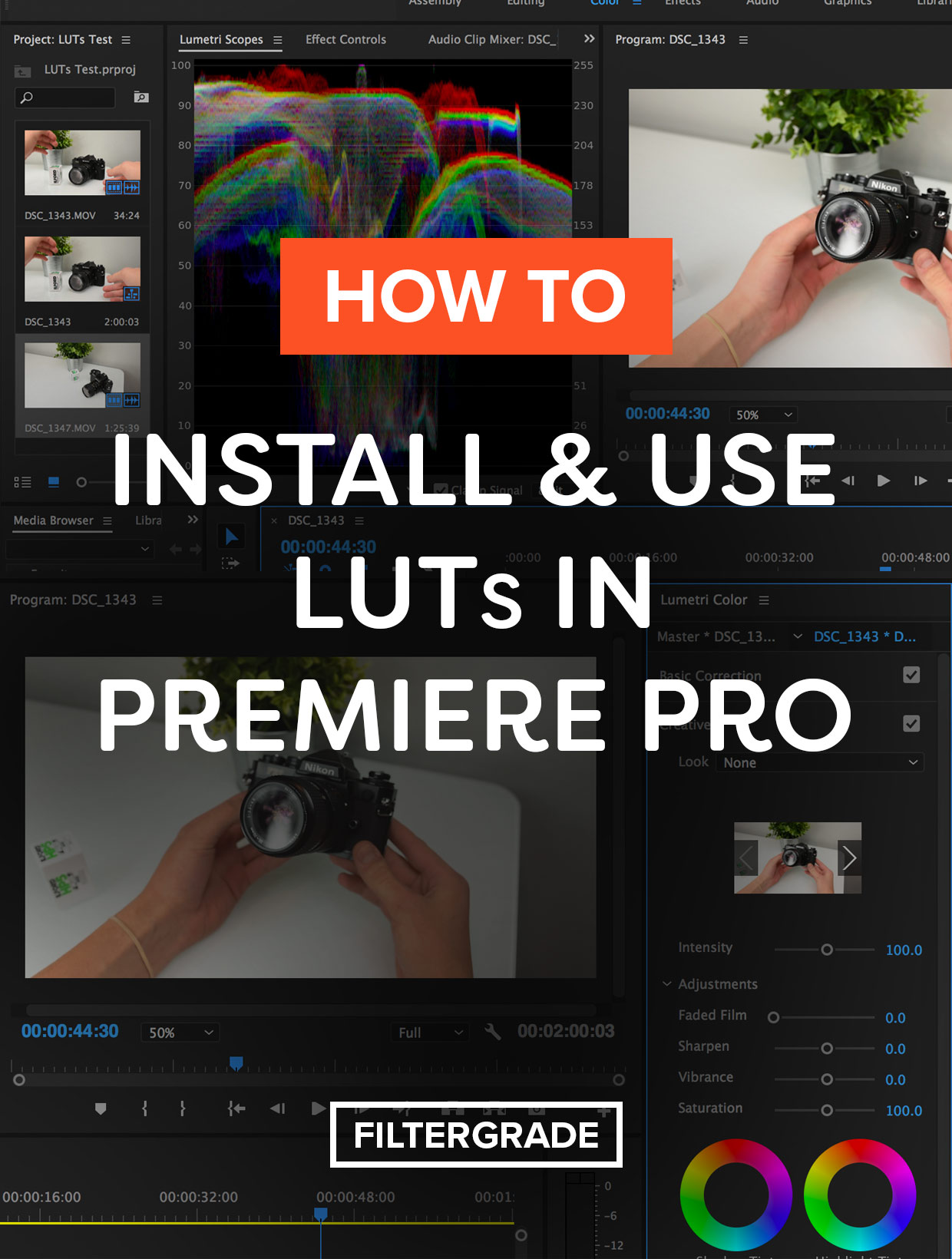 How to Install and Use LUTs in Premiere Pro step by step tutorial.