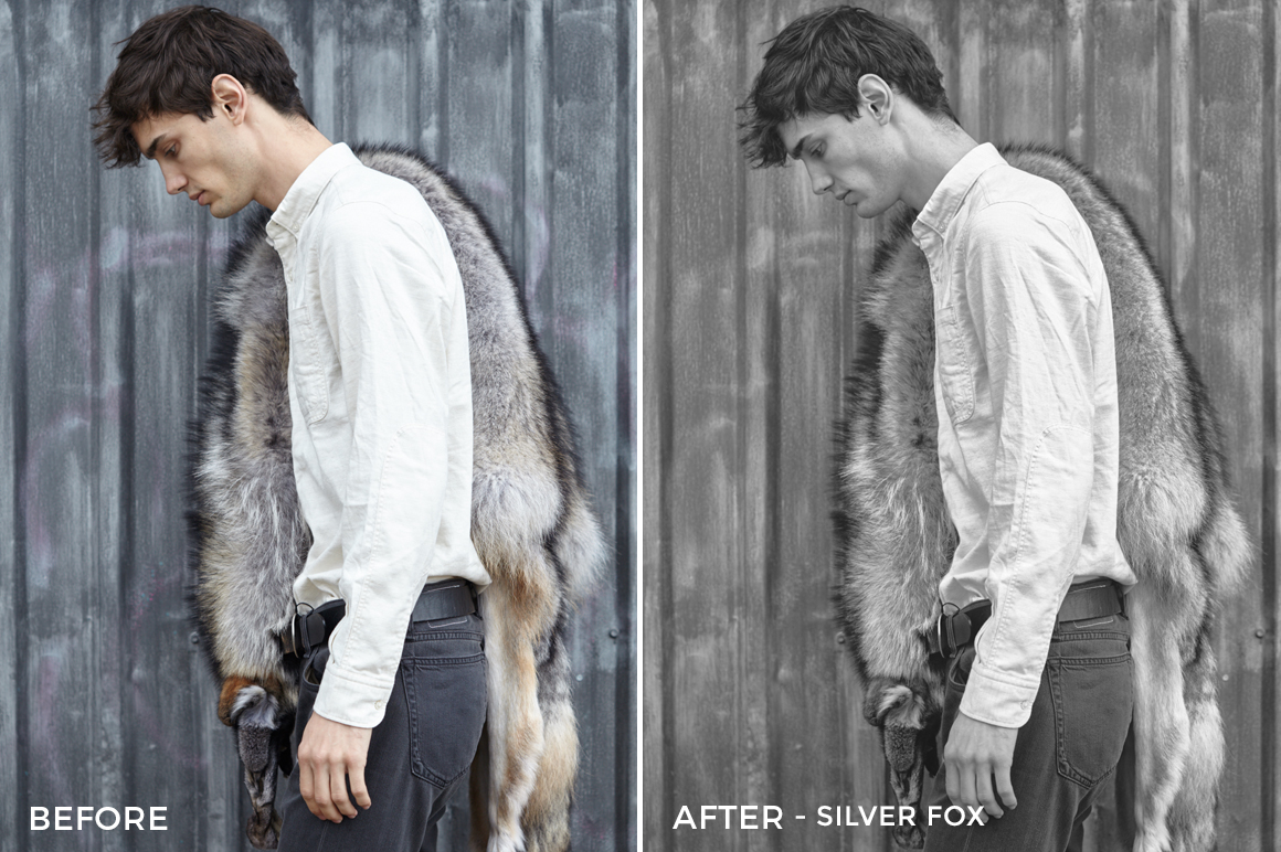 Silver Fox - Editorial Series-B+W-Capture One Styles-FilterGrade