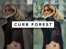 Curb-Forest---ROAD-TRIP-X-Lightroom-Preset---Basti-Hansen