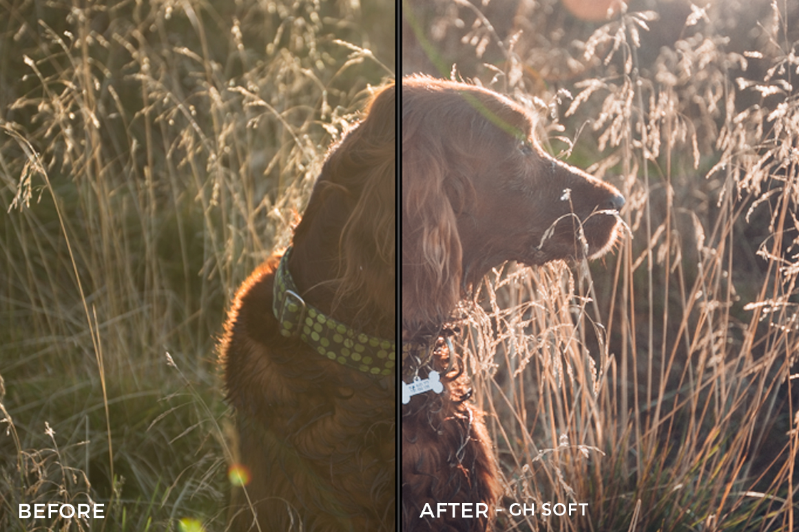 GH SOFT- Kopernikk Lightroom Presets - FilterGrade