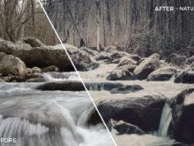 Nature - Will Milne Lightroom Presets - FilterGrade