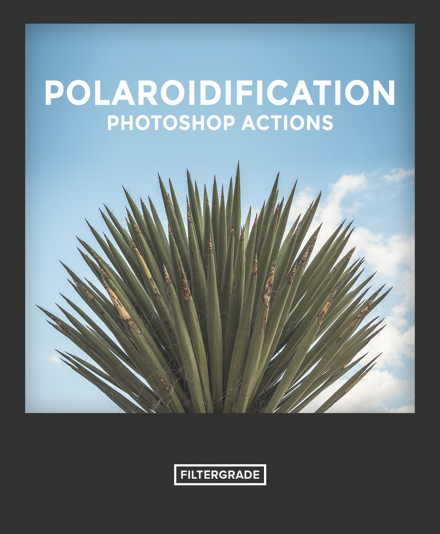 Featured Polaroidification Photoshop Actions - Will Milne - FilterGrade