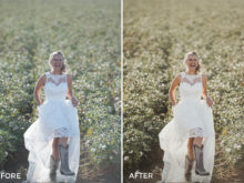 7 Photo Folk Lightroom Presets Collection - FilterGrade