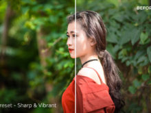 Sharp & Vibrant - Exposure Empire Bold Lightroom Presets - FilterGrade