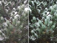 Winter Blue - Joshua Fuller Lightroom Presets - FilterGrade