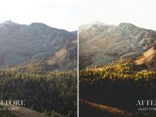 Valley Forest - Joshua Fuller Lightroom Presets - FilterGrade