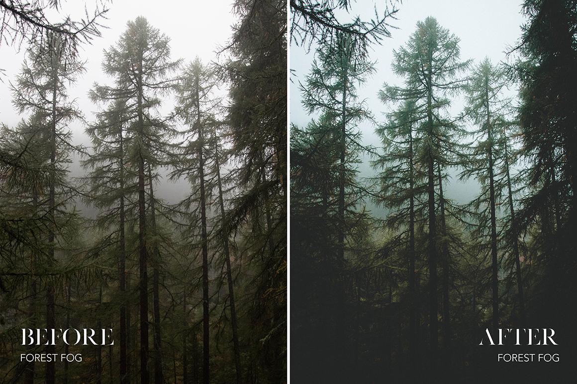 Forest Fog- Joshua Fuller Lightroom Presets - FilterGrade