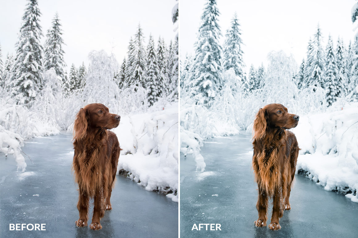 cold winter effects for lightroom