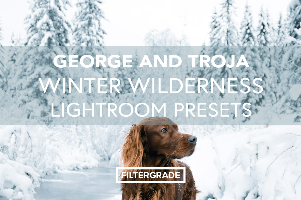 George and Troja Winter Wilderness Lightroom Presets