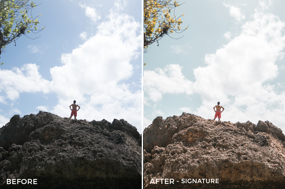 Signature 2- Andrew Livingston Lightroom Presets - FilterGrade
