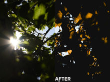 9 Featured Anthony Intraversato Video LUTs V2 - FilterGrade