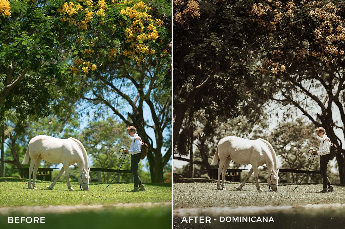 Dominicana - Oleg Cricket Lightroom Presets - FilterGrade