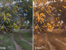 4 James Horizon Lightroom Presets - Roman Petrenko - FilterGrade