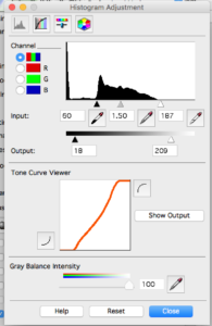 Histogram Tool - Scanning Analog Film with the Epson Perfection V550 Photo Scanner - FilterGrade