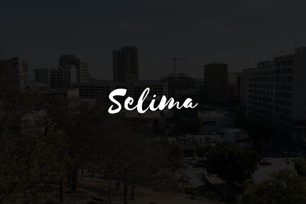 fonts-for-photographers-selima