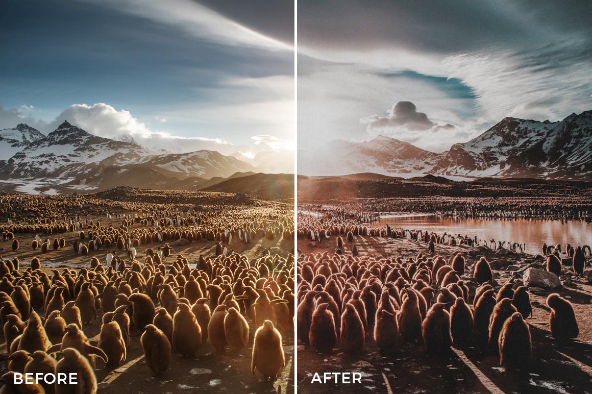 11 Nick Asphodel Film Lightroom Presets - FilterGrade
