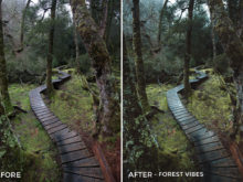 Forest Vibes - Kirk Richards Lightrooom Presets Vol. 2 - FilterGrade