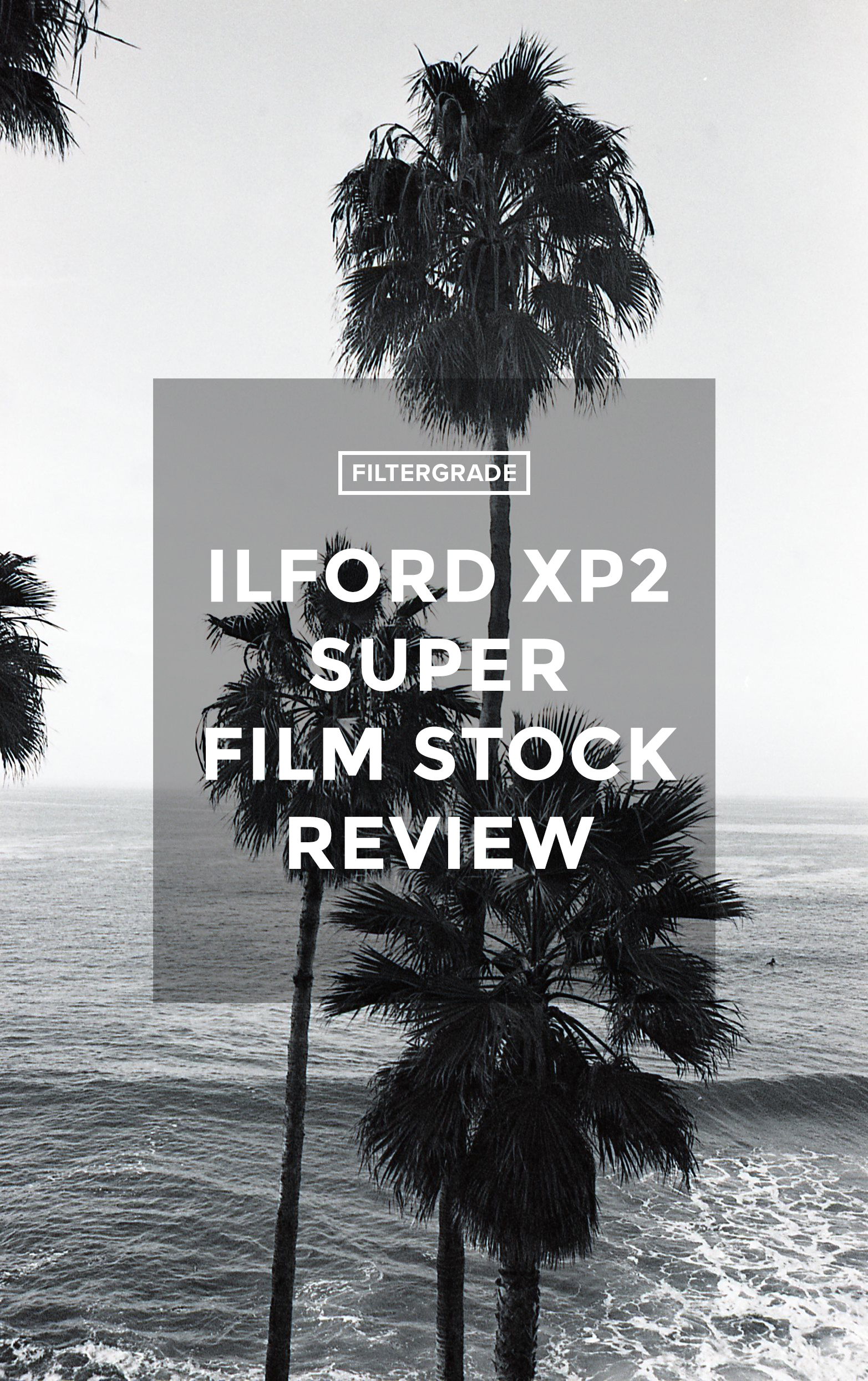 Cover Ilford XP2 Super Film Stock Review - FilterGrade