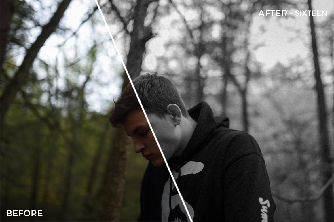 Mist - The FilterGrade Agency Lightroom Presets Bundle - FilterGrade