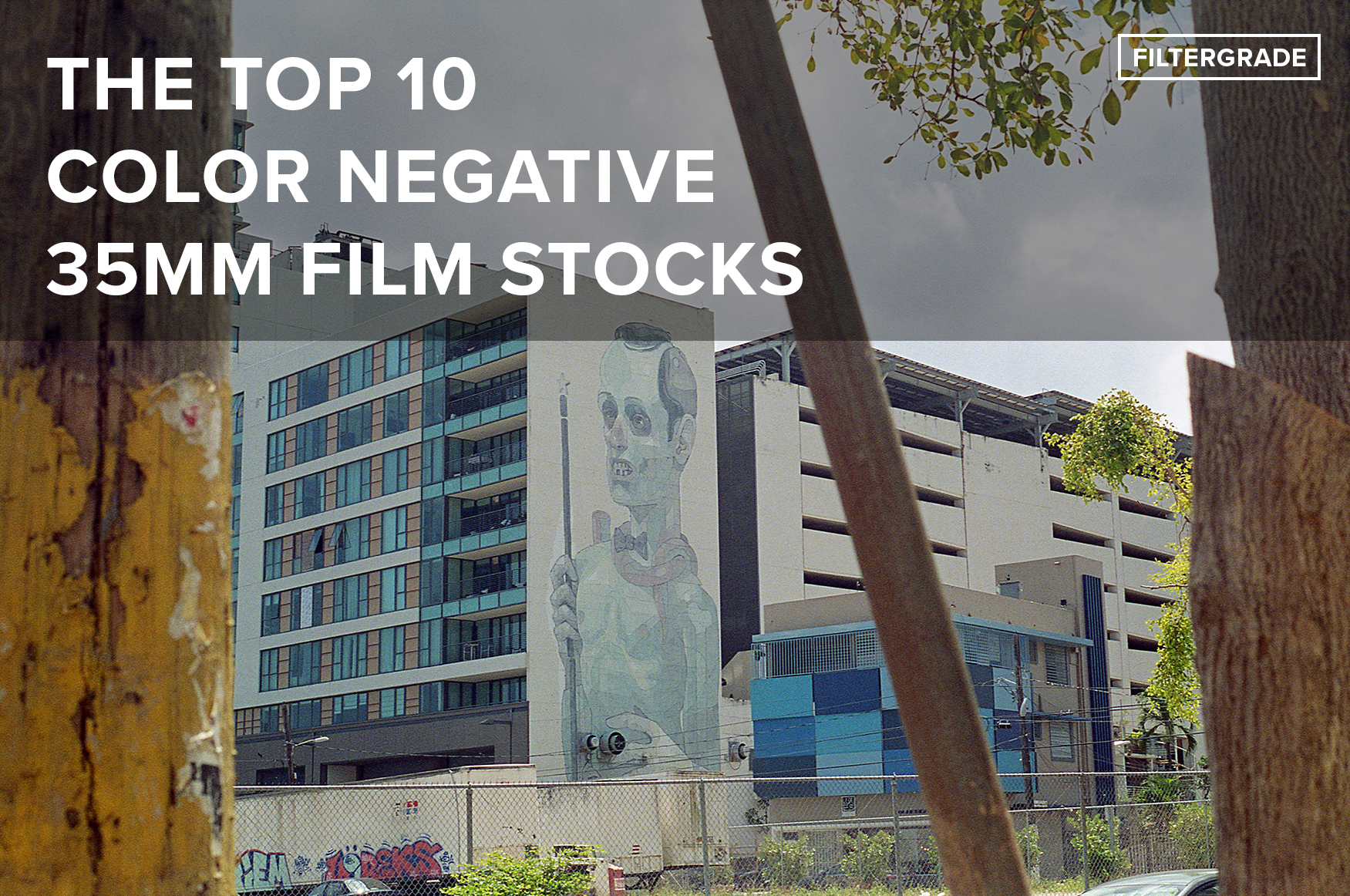 (FINAL) The Top 10 Color Negative 35mm Film Stocks - FilterGrade