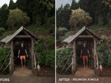 Reunion Jungle- Alex Tritz Lightroom Presets Volume 3 - FilterGrade