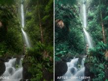 Lush Greens - Catherine Simard Lightroom Presets - FilterGrade