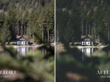 Wild Green - Joshua Fuller Lightroom Presets Vol. 4 - Dolomites - FilterGrade