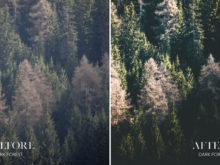 Dark Forest - Joshua Fuller Lightroom Presets Vol. 4 - Dolomites - FilterGrade