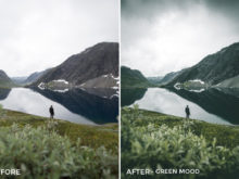 Green Mood - Twin the World Lightroom Presets Vol. 2 - FilterGrade