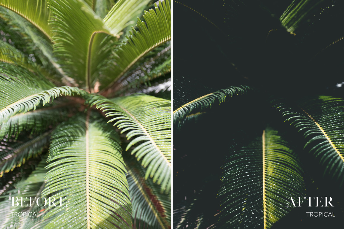 Tropical - Joshua Fuller Lightroom Presets Vol. 5 Dubai - FilterGrade