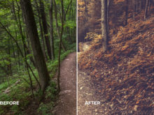 creative profiles for lightroom, created by loaded landscapes