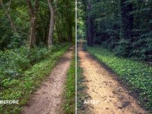 moody lightroom profiles for landscapes