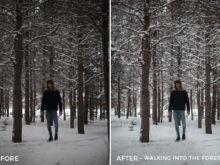 Walking into the Forest - Alex Tritz Lightroom Presets Vol. 4 (CANADA PACK) - FilterGrade